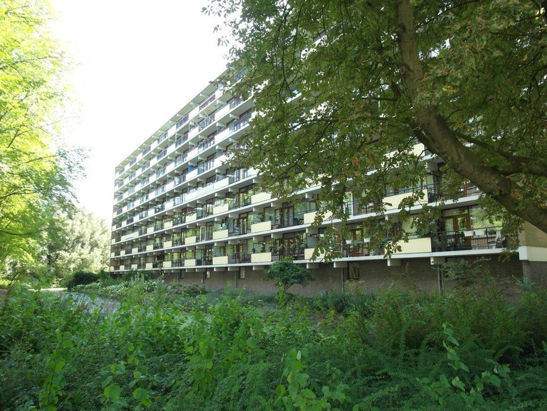 Roland Holstlaan 1197, Delft foto-0
