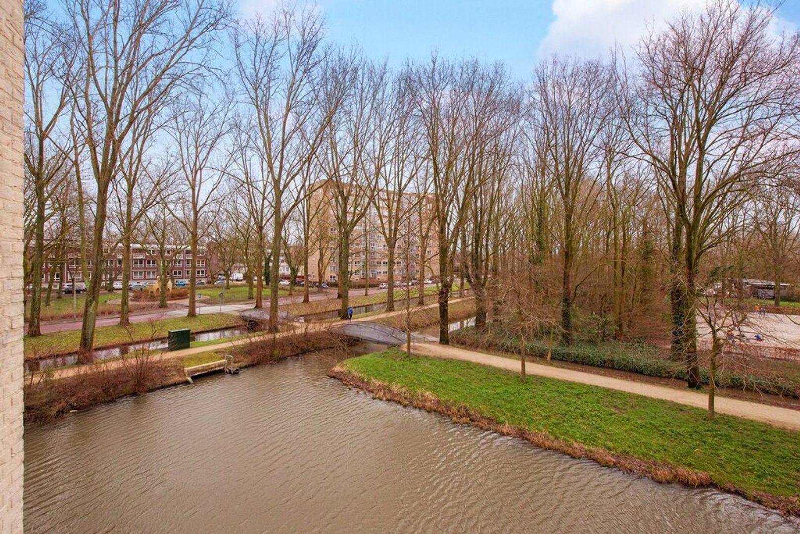 Parkzoom 7, Delft foto-26
