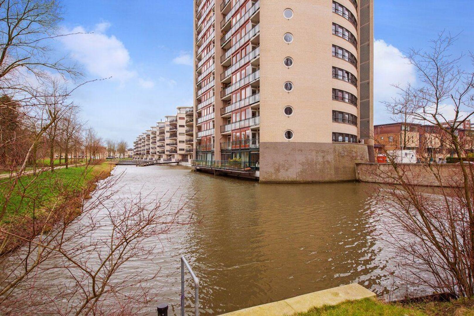 Parkzoom 7, Delft foto-44