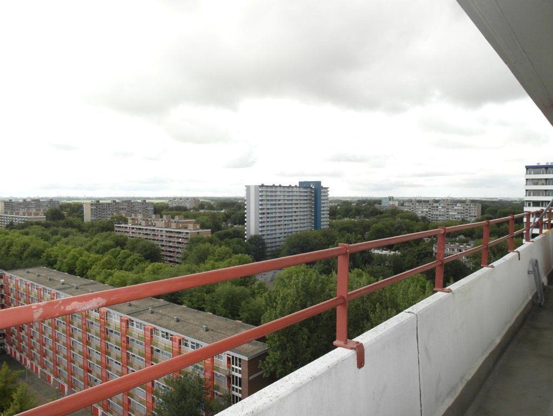 Hendrik Tollensstraat 356, Delft foto-9