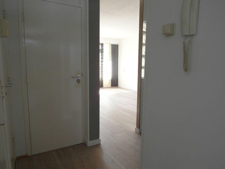 Hendrik Tollensstraat 356, Delft foto-12