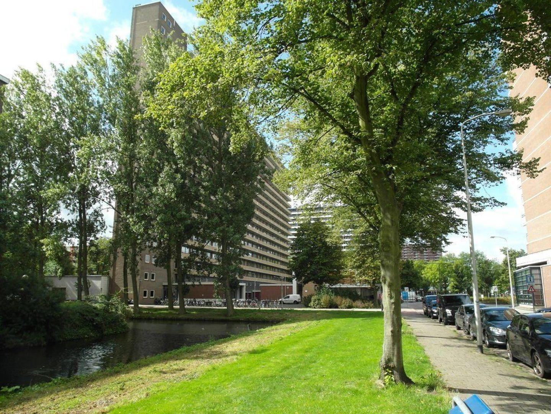 Hendrik Tollensstraat 356, Delft foto-20