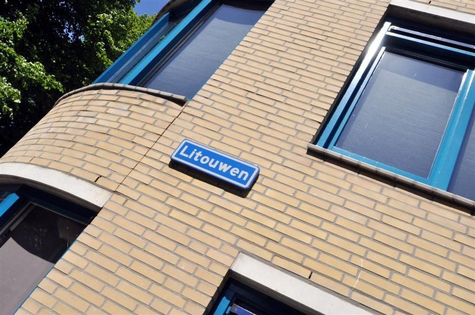 Litouwen 8 ., Delft foto-1