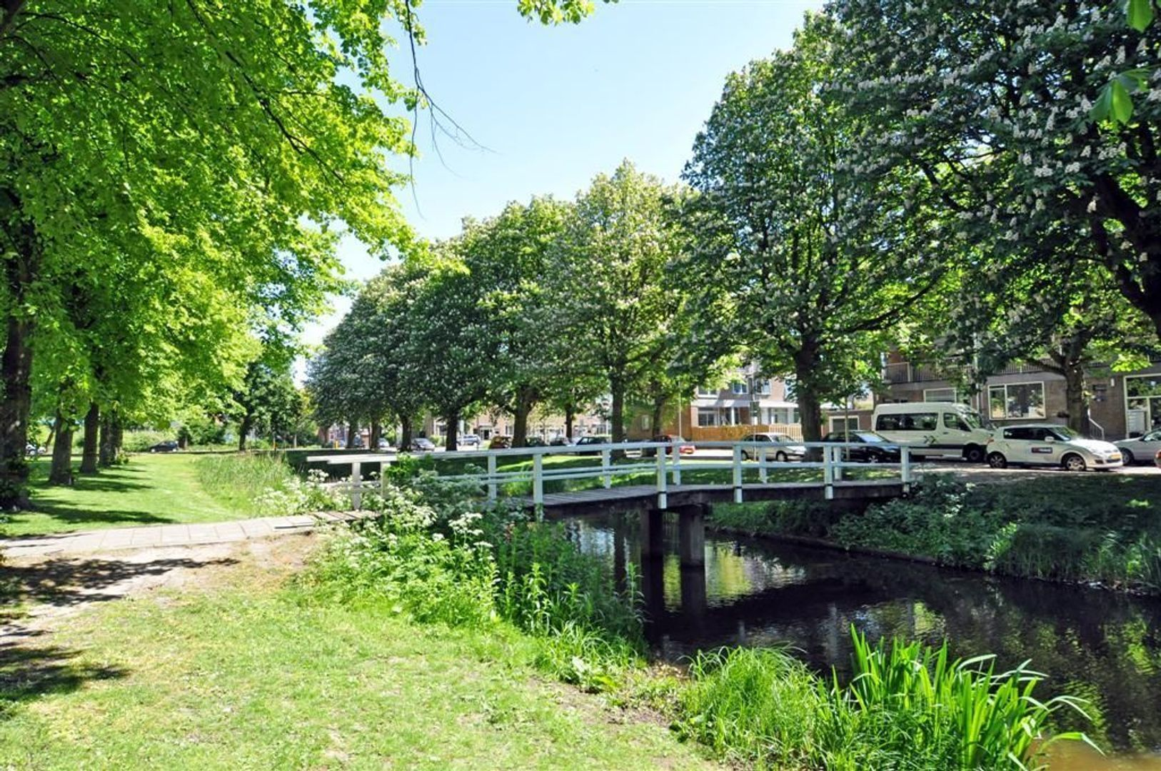 Litouwen 8 ., Delft foto-4