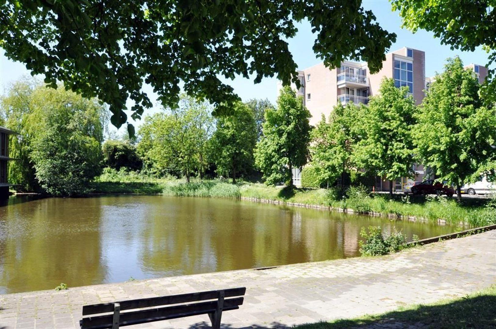 Litouwen 8 ., Delft foto-21