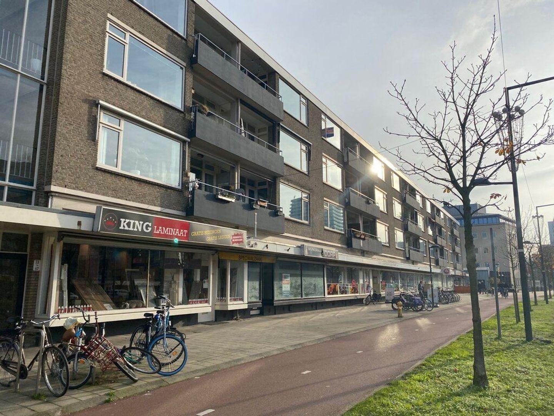 Papsouwselaan 81, Delft foto-0