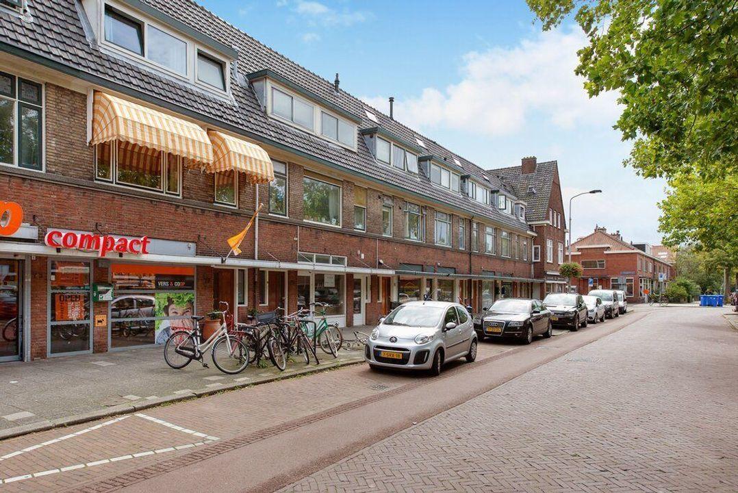 Hof van Delftlaan