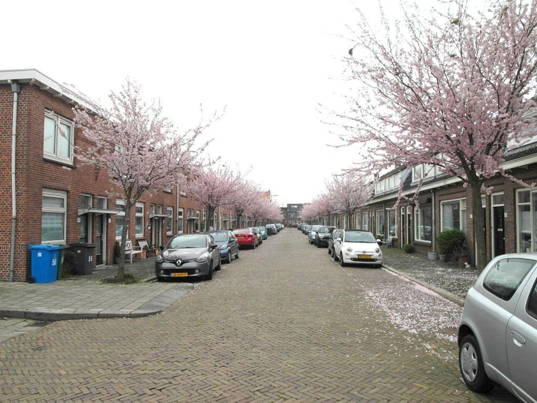 Verlengde Singelstraat 55, Delft foto-35