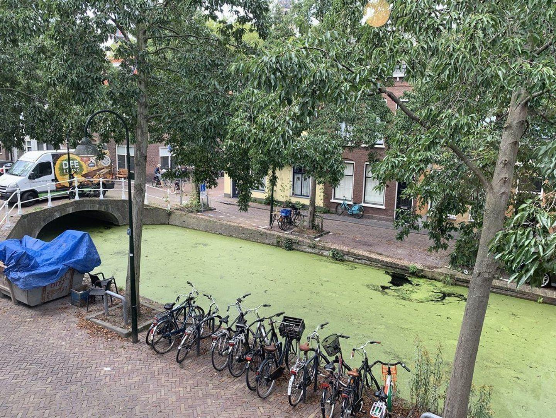Molslaan 121 A, Delft foto-14
