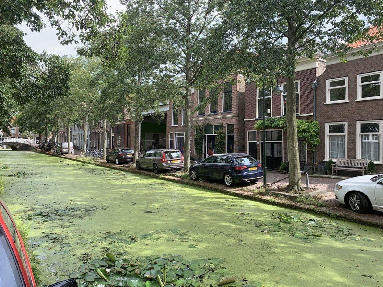 Molslaan 121 A, Delft foto-28