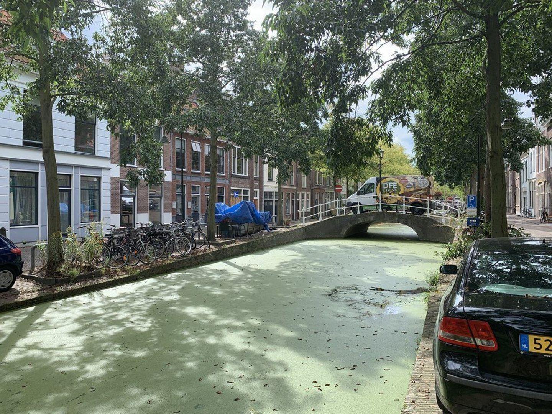 Molslaan 121 A, Delft foto-29
