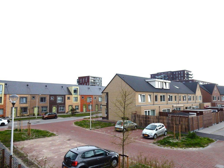 Hermelijnzoom 2, Pijnacker foto-32