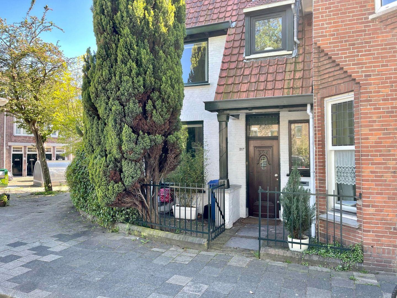 Delfgauwseweg 217, Delft foto-4