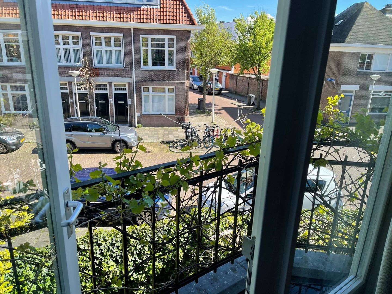 Delfgauwseweg 217, Delft foto-25