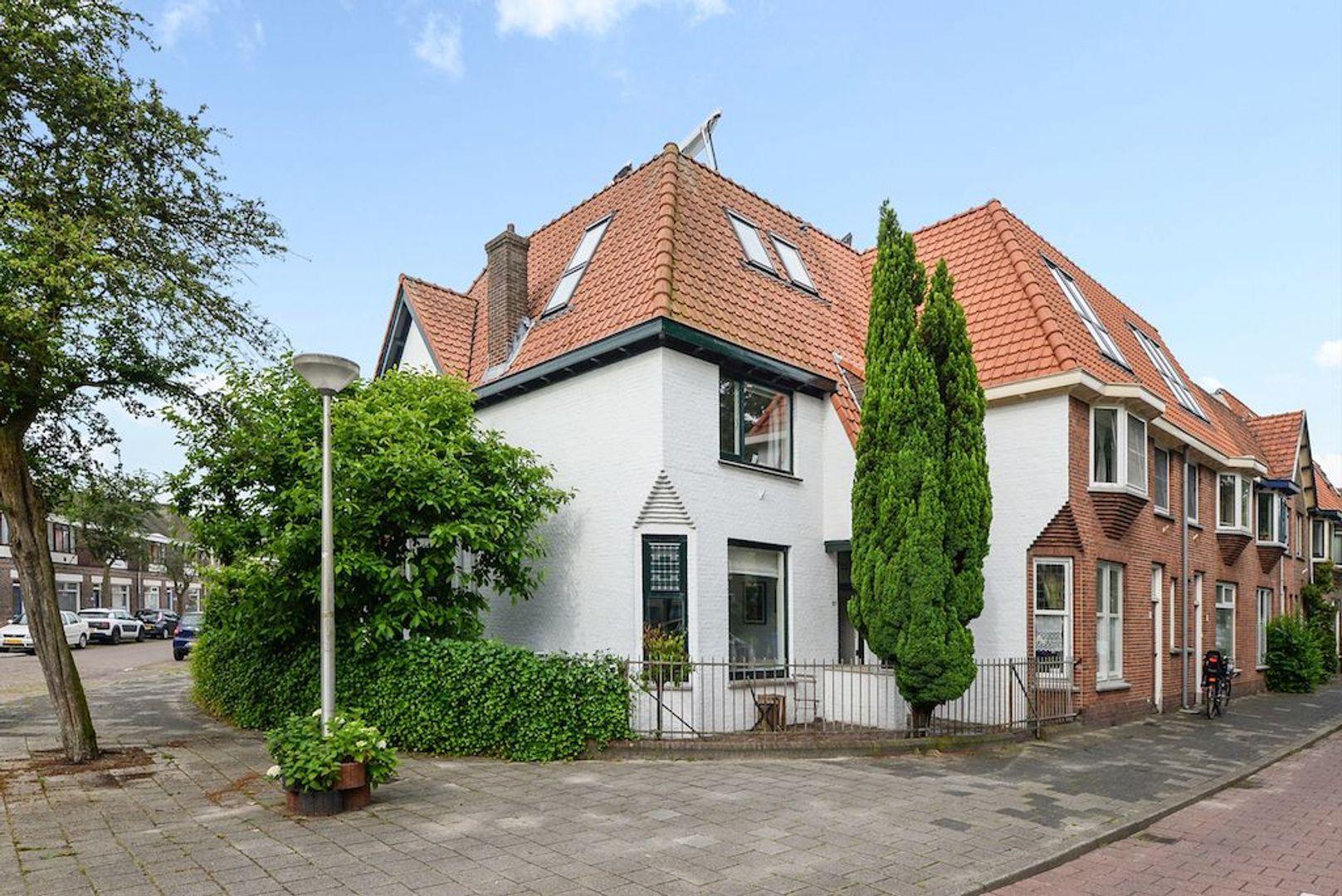 Delfgauwseweg 217, Delft foto-0