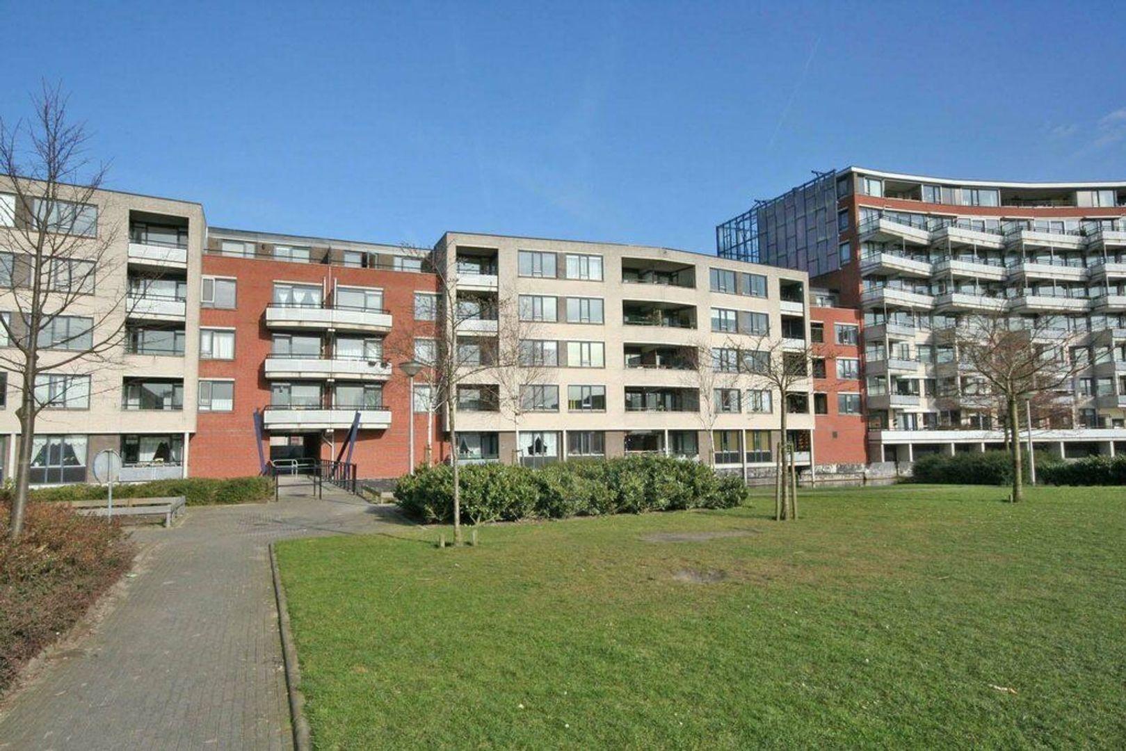 Drogerij 58, Den Hoorn foto-4