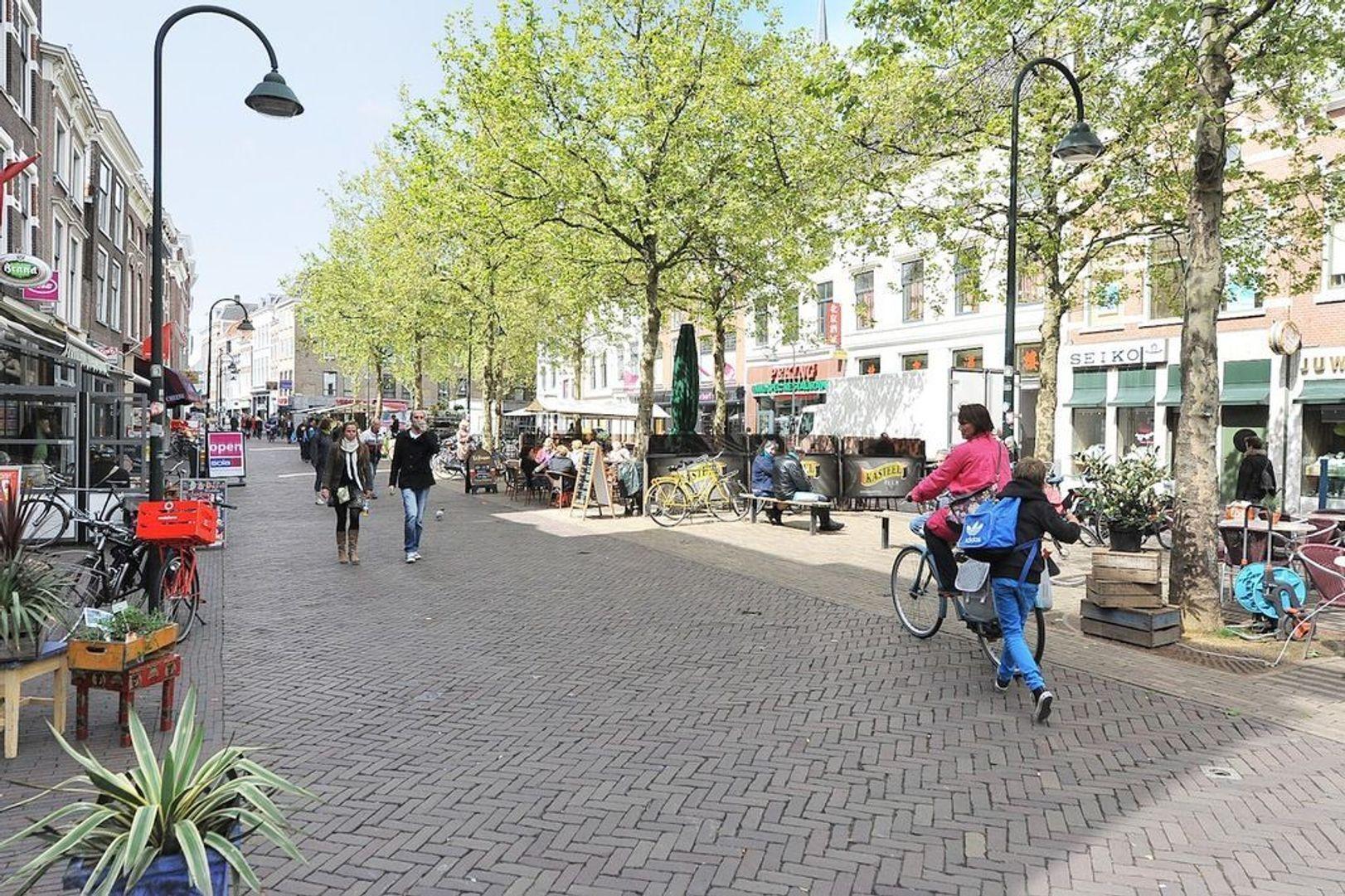 Paradijspoort 19, Delft foto-29