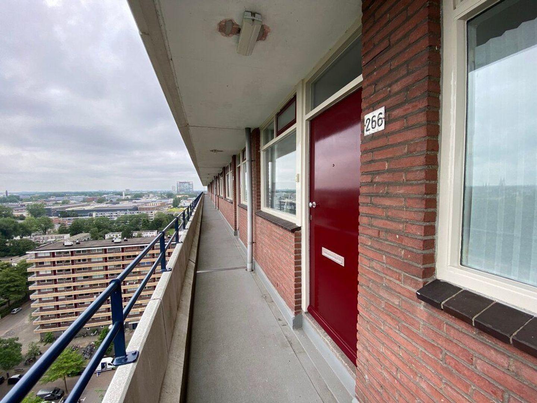 Bosboom-Toussaintplein 266, Delft foto-7