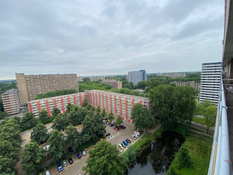 Hendrik Tollensstraat 348, Delft foto-27