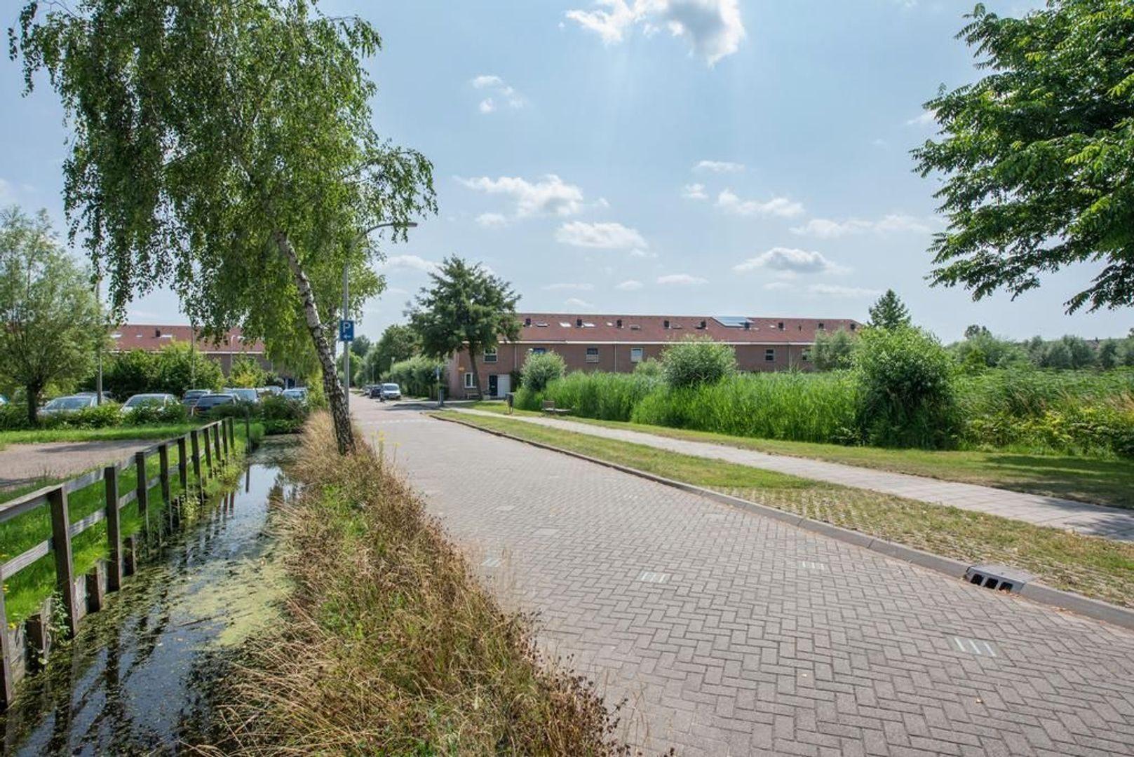 Hollandsche Tuyn 34, Delfgauw foto-9