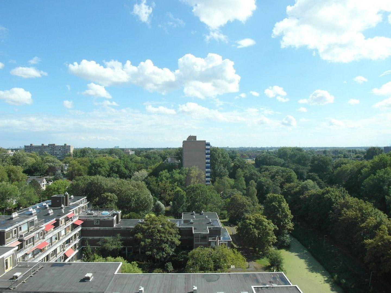 Aart van der Leeuwlaan 202, Delft foto-15