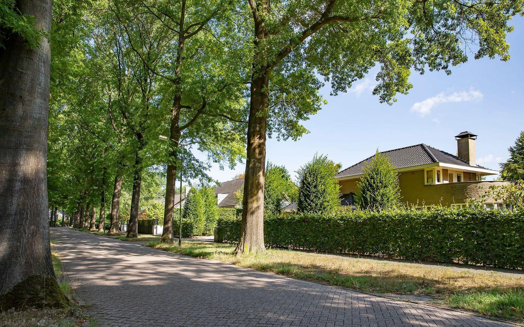 Baerdijk 141, Oisterwijk foto-