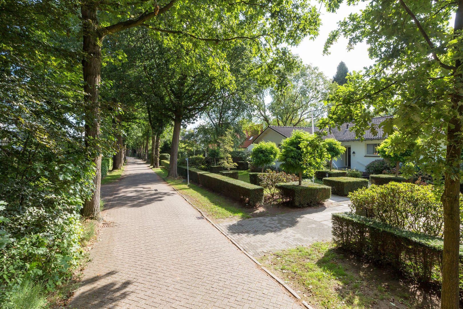 Brede Steeg 6, Oisterwijk foto-