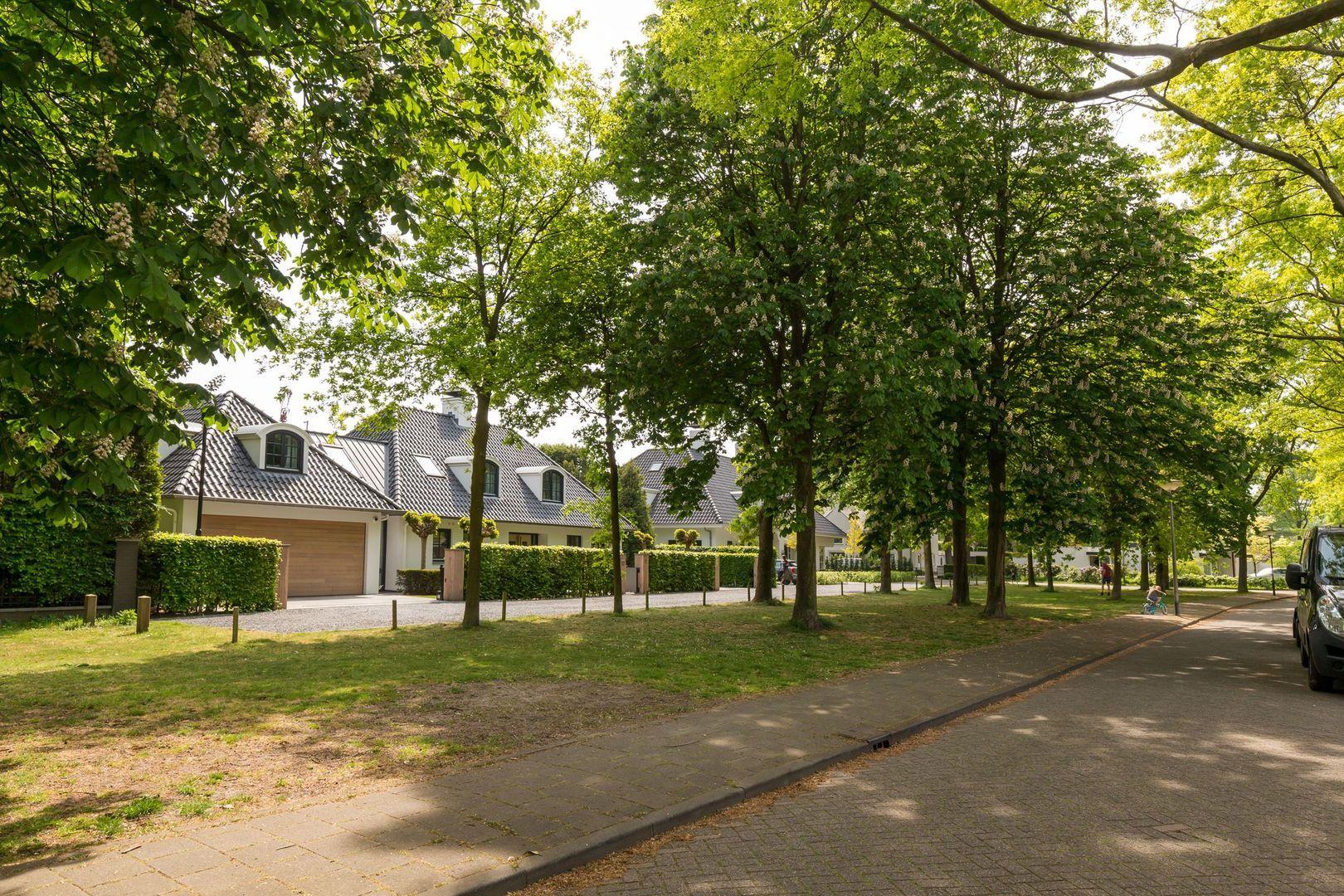 Merodelaan 57, Oisterwijk foto-