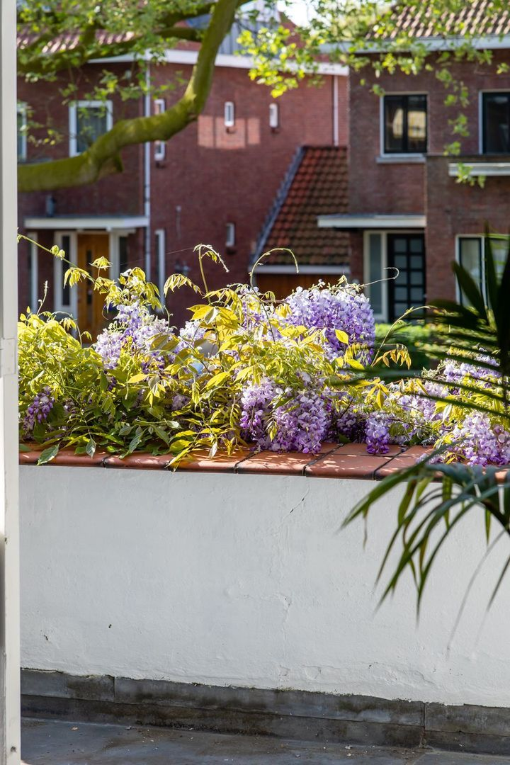 Berglustlaan 80, Rotterdam foto-
