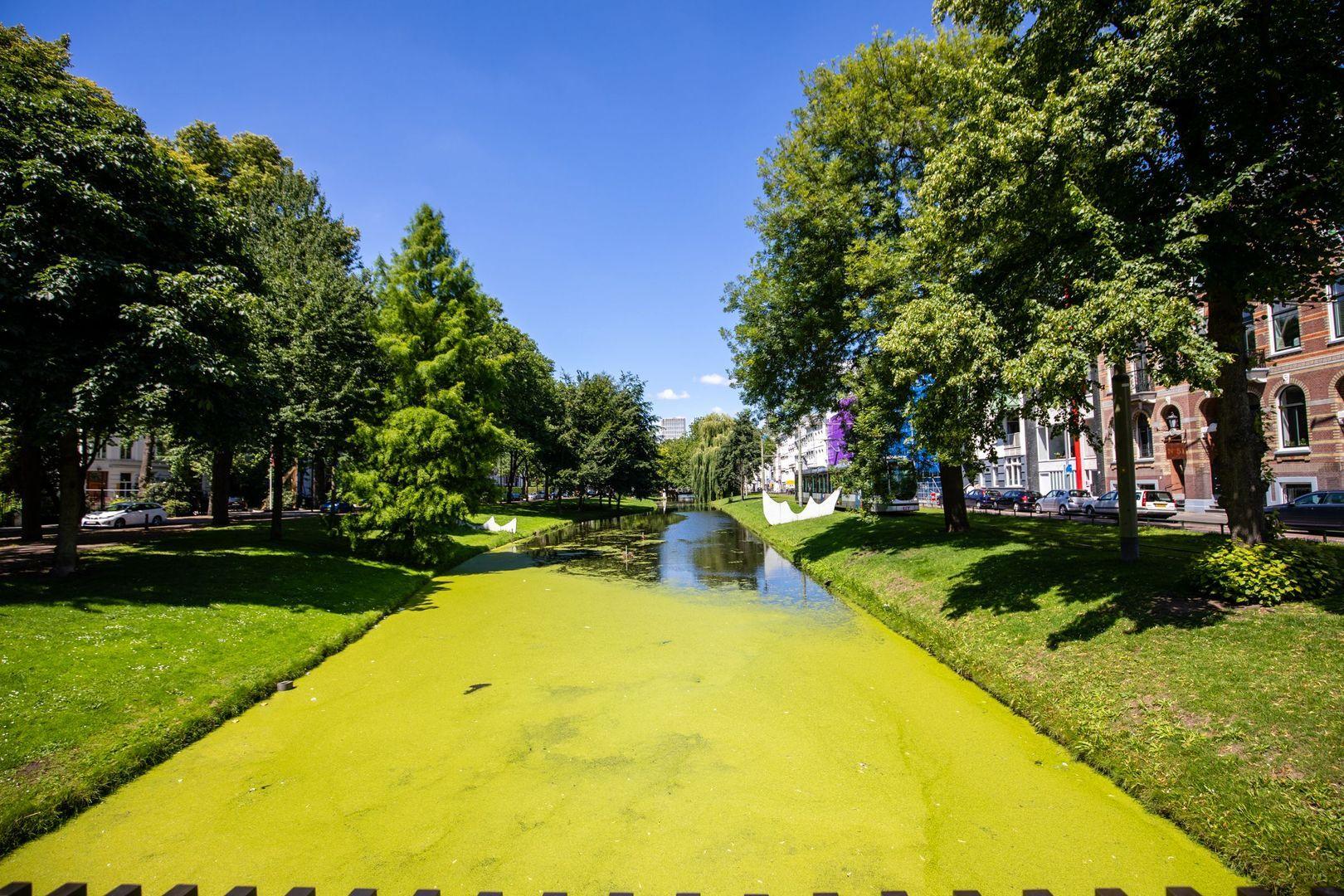 Eendrachtsweg 63 I, Rotterdam foto-
