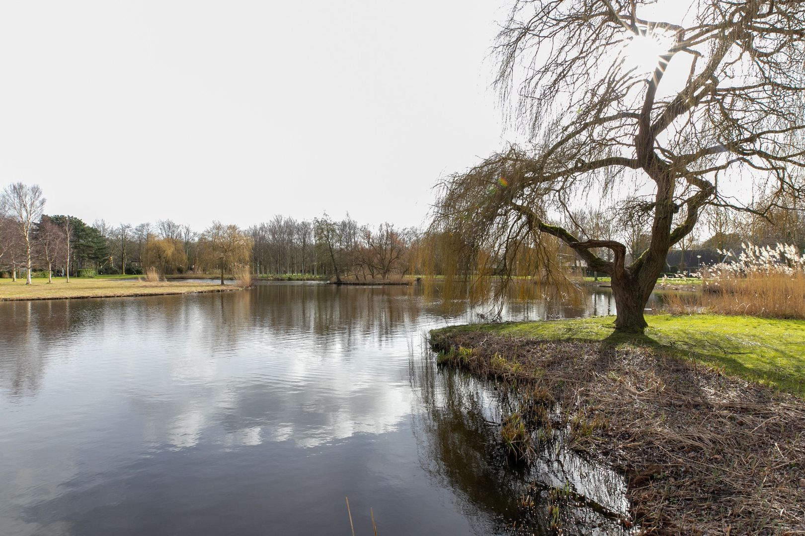 Orchislaan 13, Oostvoorne foto-