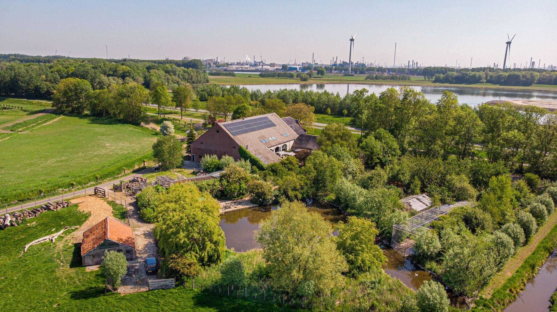 Hollemaarsedijk 6, Zwartewaal foto-