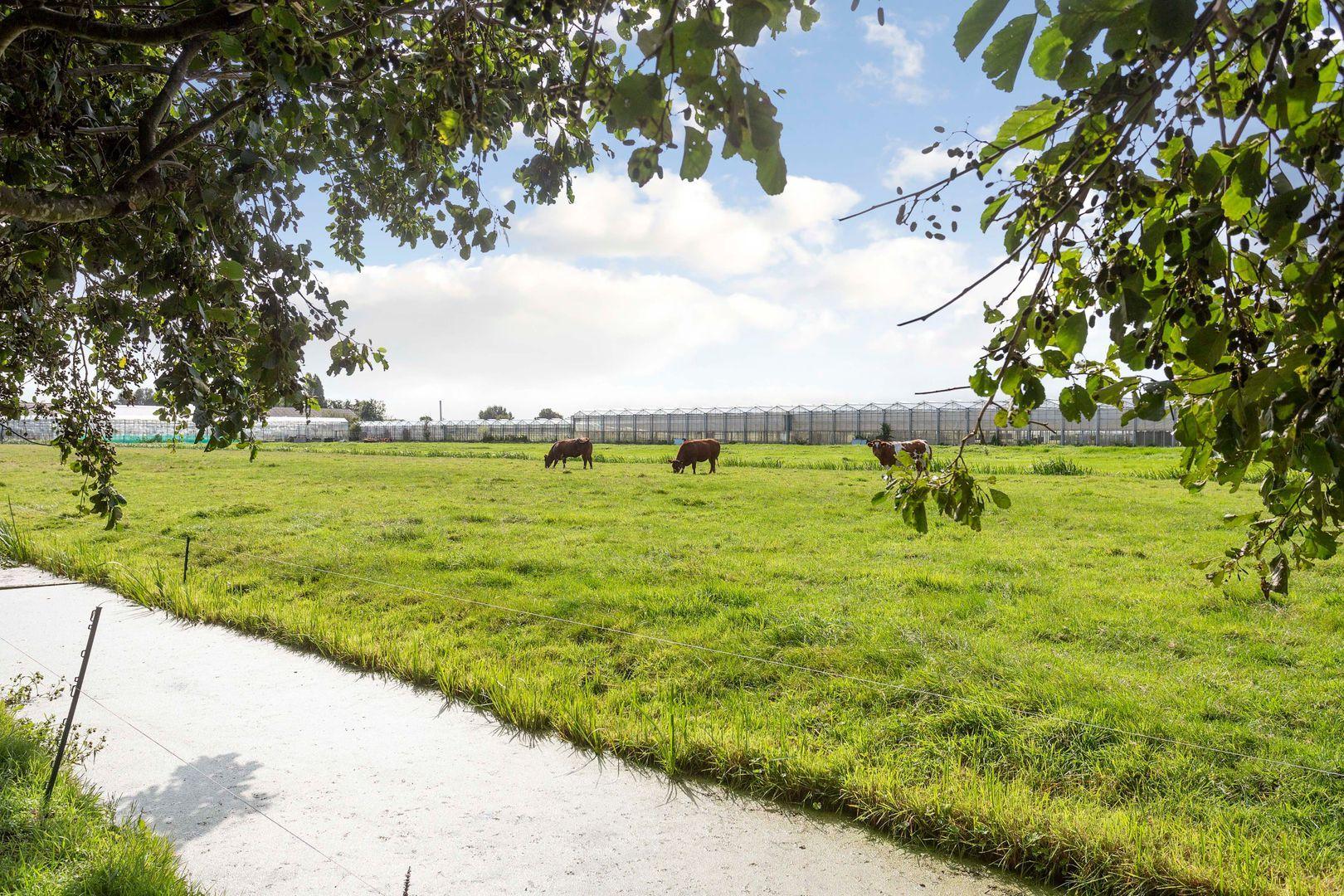 Lisserbroekerweg 10, Lisserbroek foto-