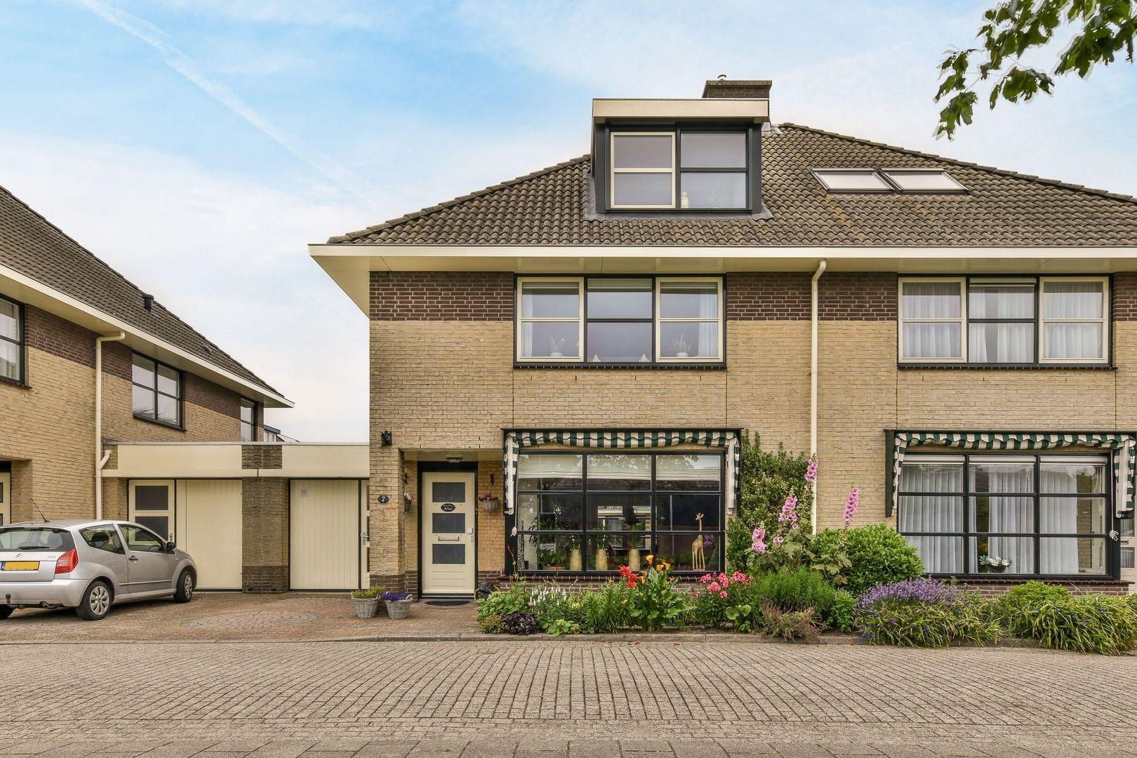 Aster 7, Noordwijkerhout foto-