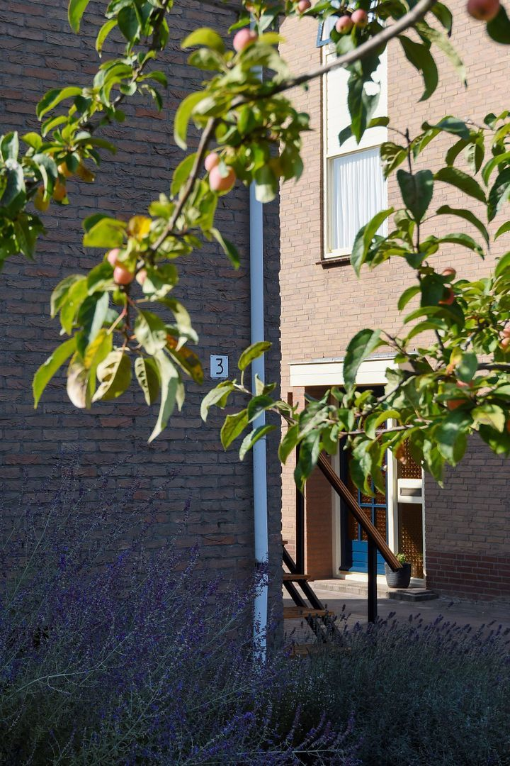 van Weesstraat 3, Putten foto-