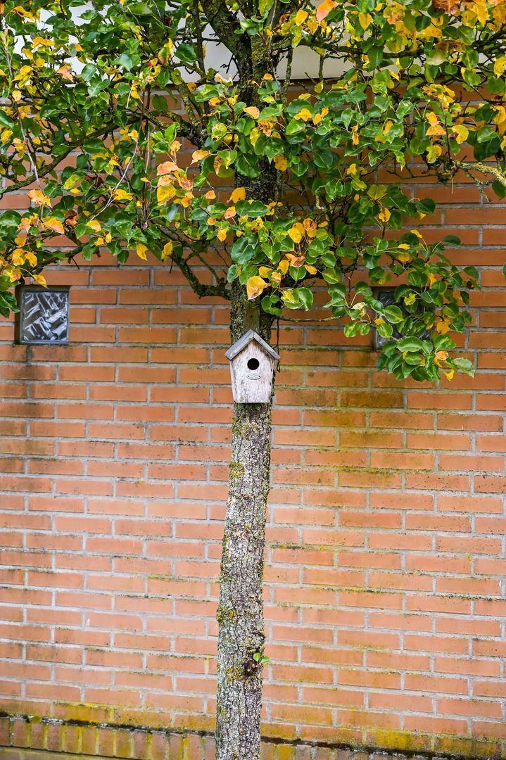 Meester Mertensstraat 6, Nederweert foto-