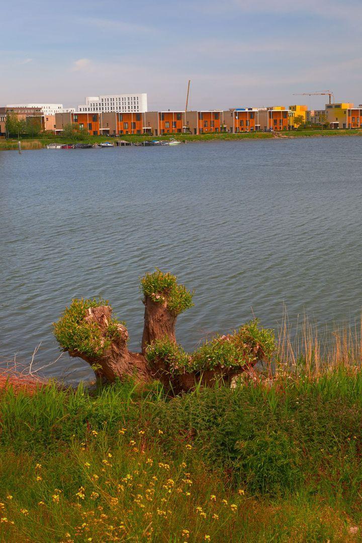 Ben van Meerendonkstraat 321 Pent, Amsterdam foto-