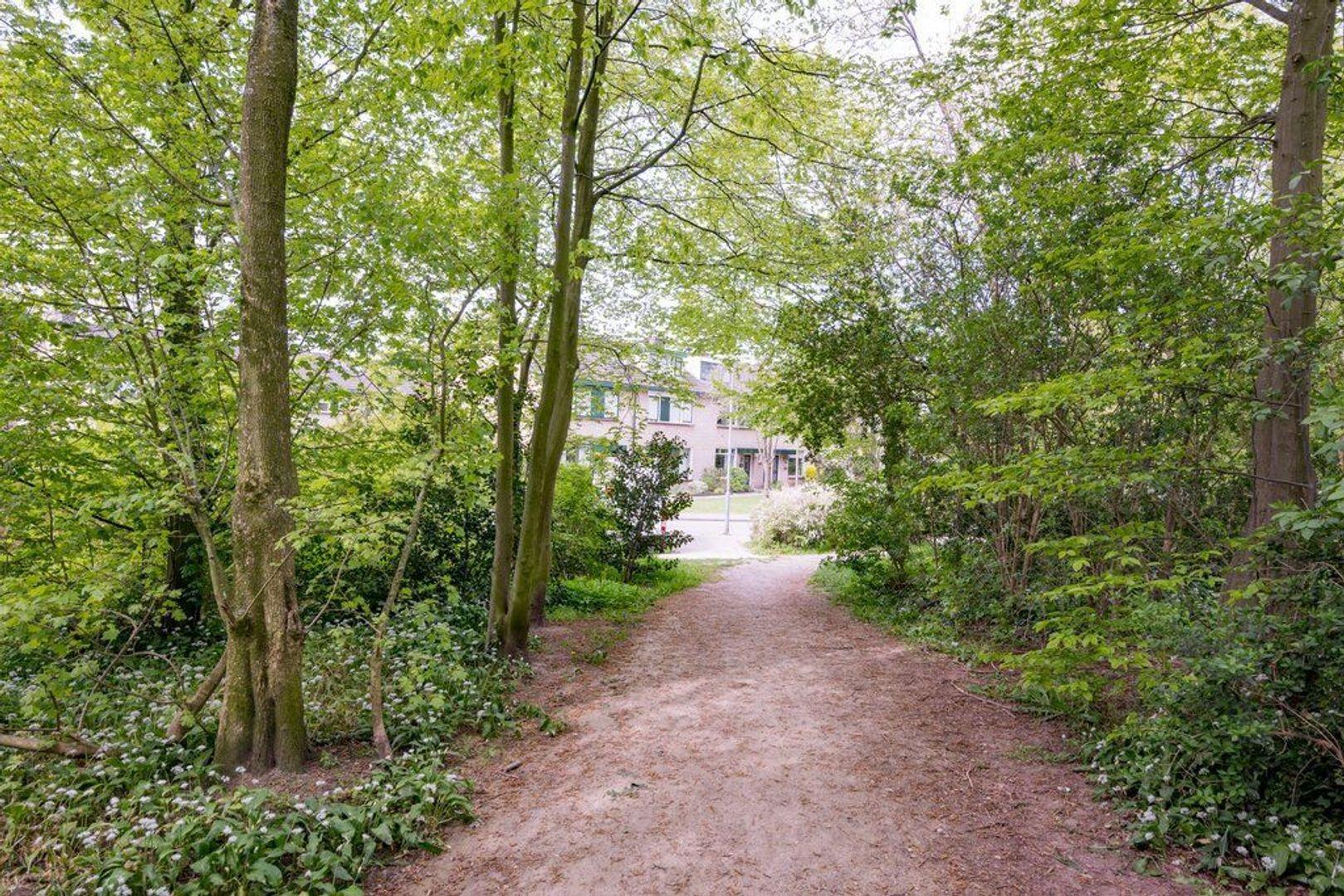 Wittenburg 40, Nijkerk foto-39