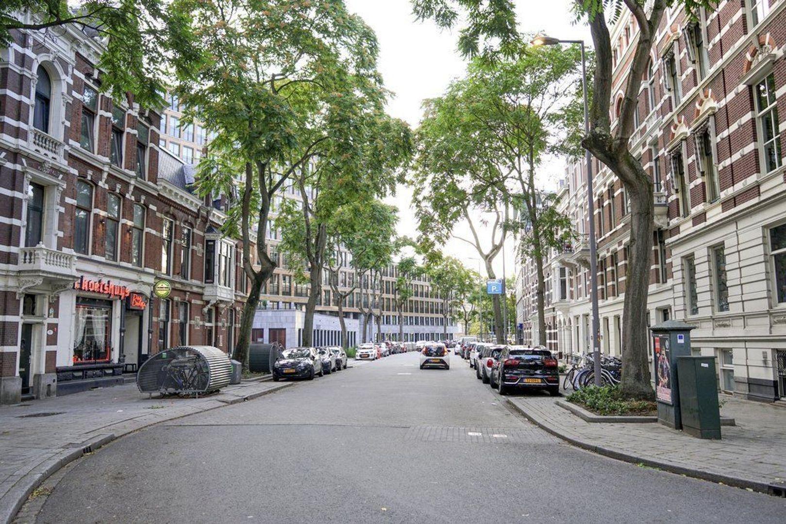 Van Vollenhovenstraat 3 426, Rotterdam foto-8