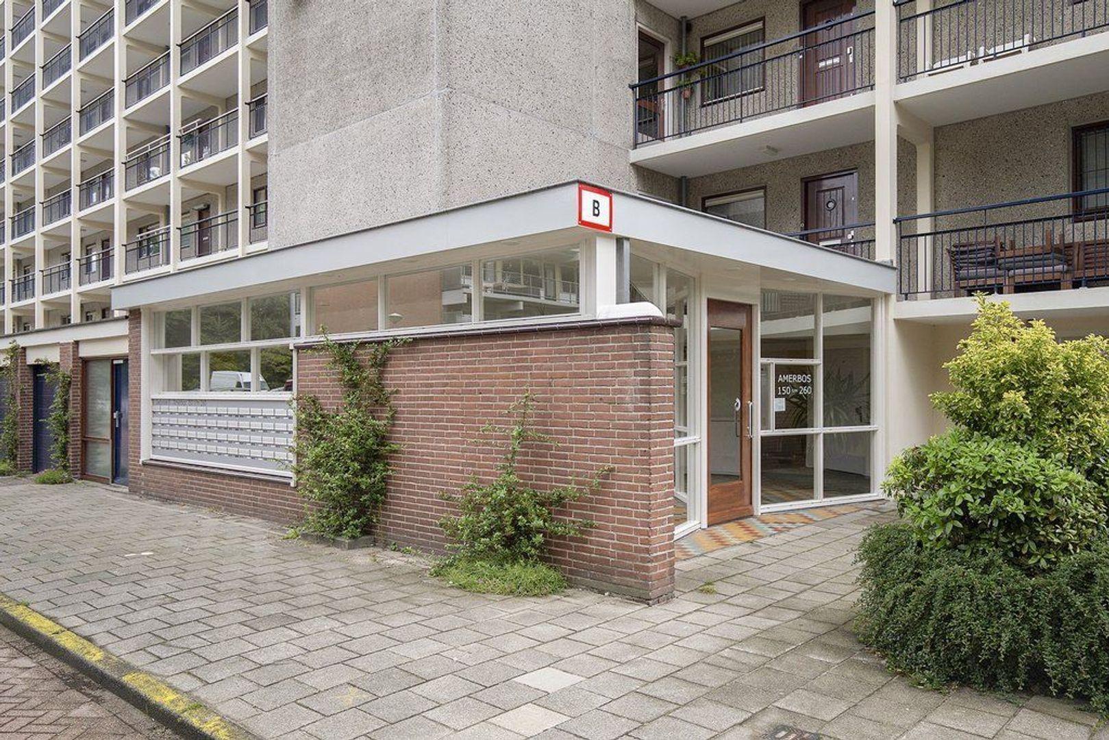 Amerbos 254, Amsterdam foto-0