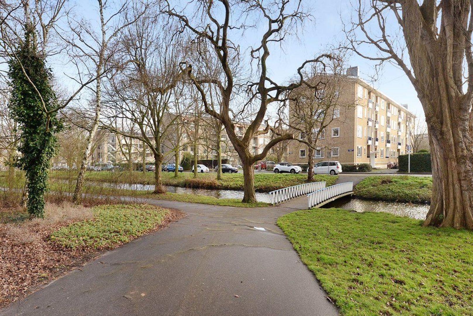 Stadhoudersplantsoen 188, Den Haag foto-23