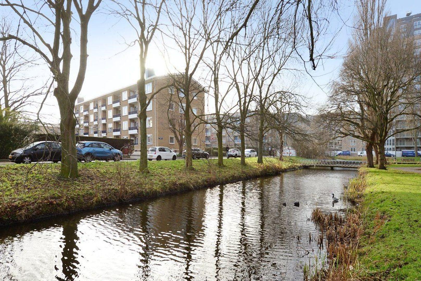 Stadhoudersplantsoen 188, Den Haag foto-25