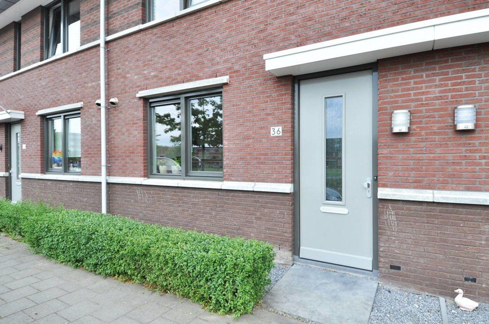 Vlietpolderstraat 36, Den Haag foto-1