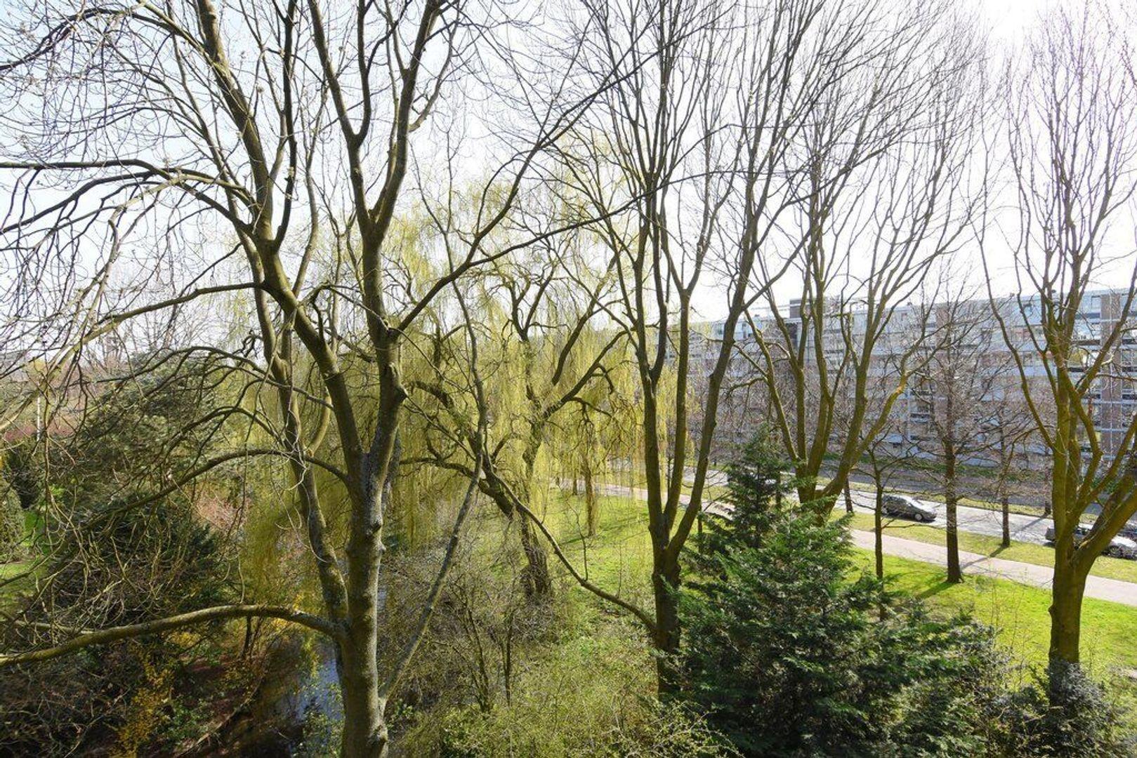 Steenvoordelaan 149, Rijswijk foto-4