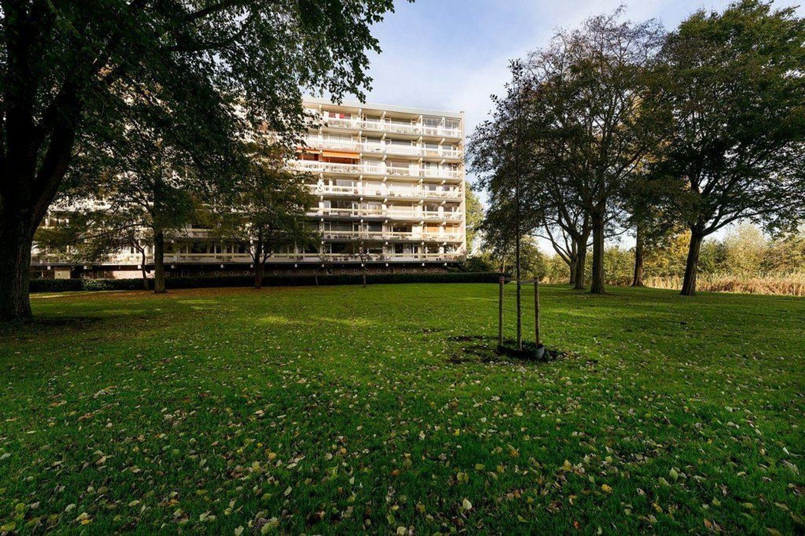 Isabellaland 1110, Den Haag foto-27