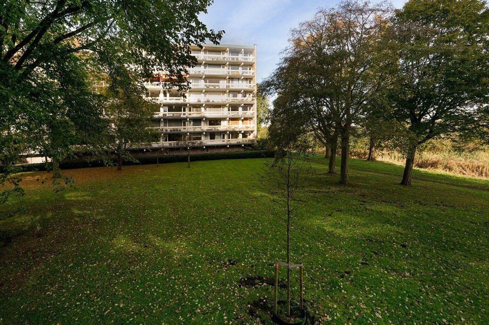 Isabellaland 1110, Den Haag foto-26