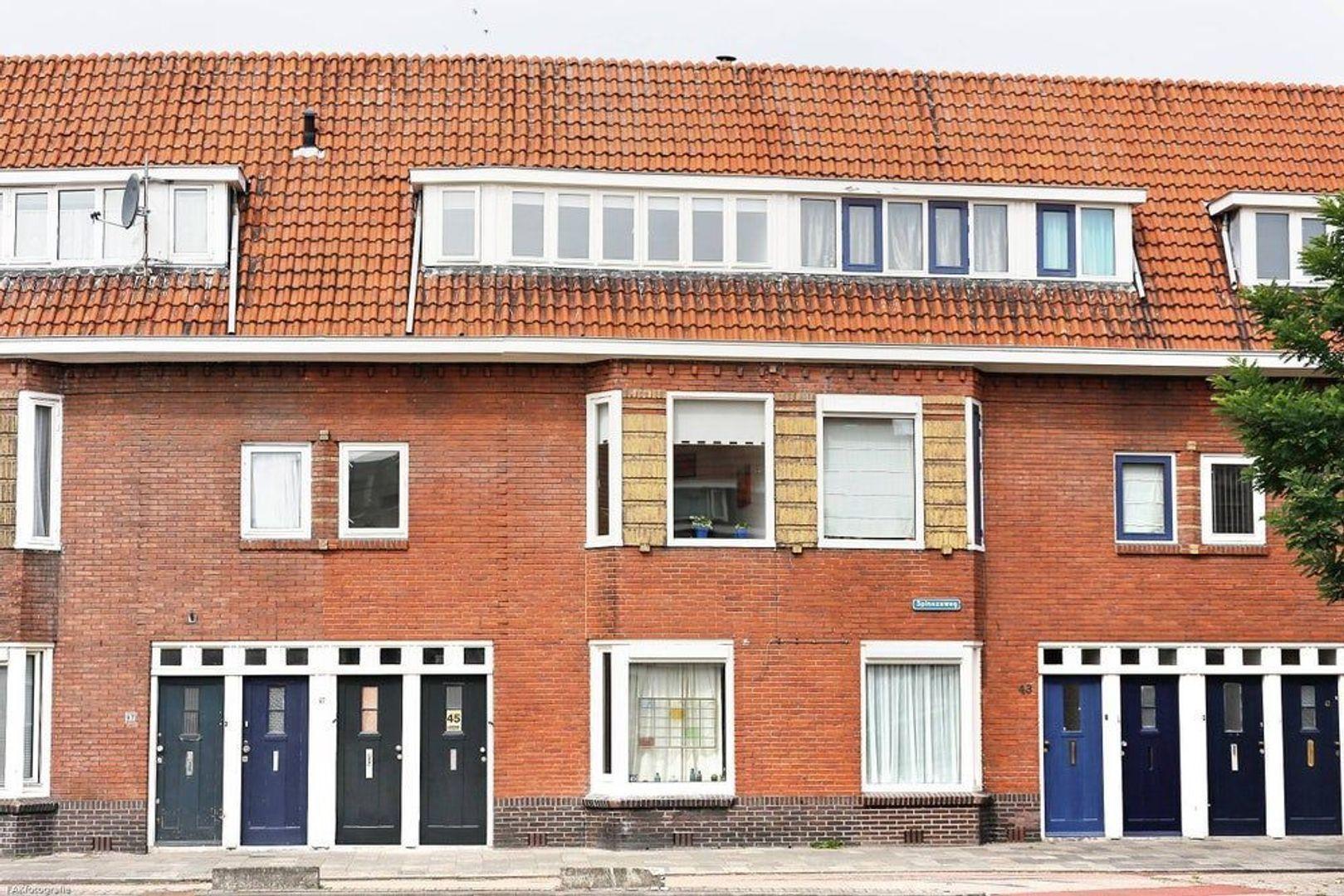 Spinozaweg, Utrecht foto-0