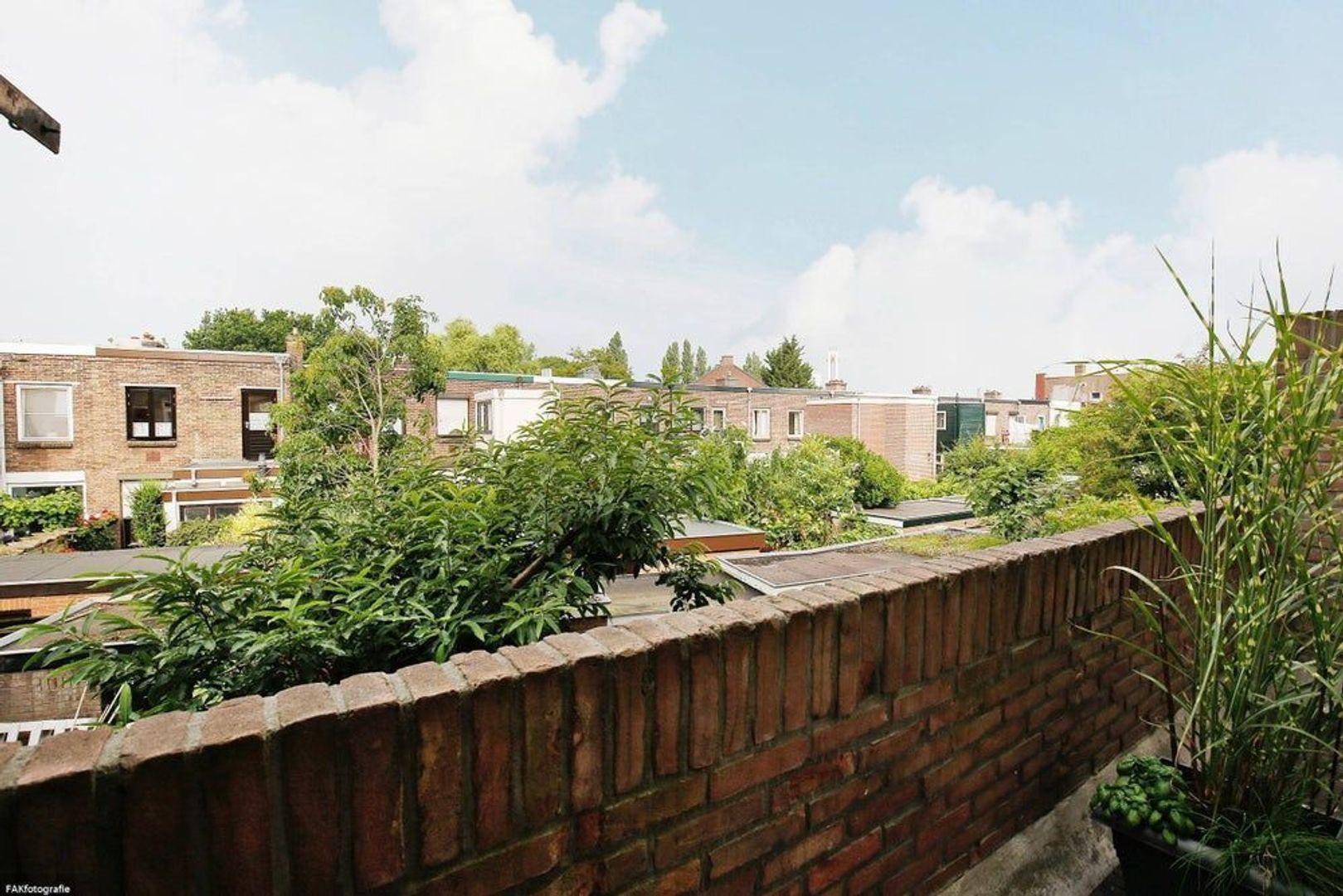 Spinozaweg, Utrecht foto-23