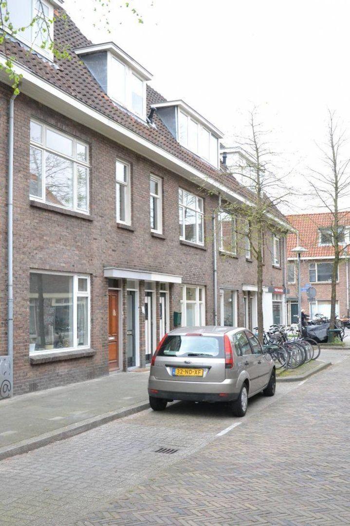 Lepelaarstraat, Utrecht foto-0