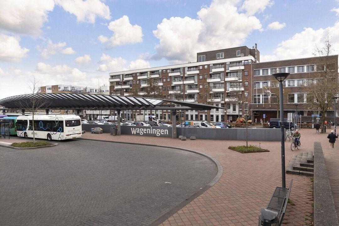 Stadsbrink 359, Wageningen foto-small